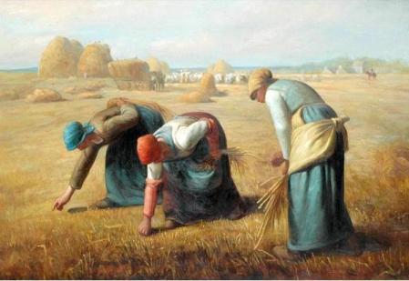 campesinos